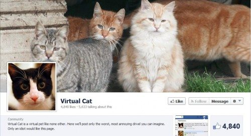 Facebook Fraud Virtual Cat